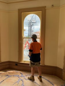 Termite-Inspections-Birds-Pest-Control-Indooroopilly-QLD