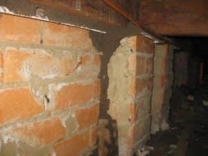 Termite mudding in sub-floor image