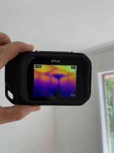 Thermal camera with termite nest image