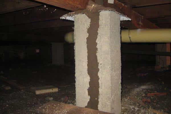 Large termite mud tube in sub-floor image