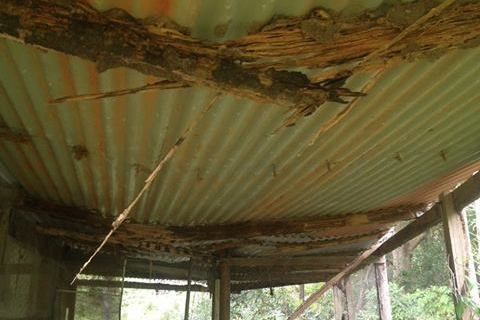 Roof collapse termite damage image